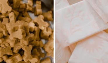 SHCP propone eliminar IVA de toallas femeninas y alimento pasa mascotas