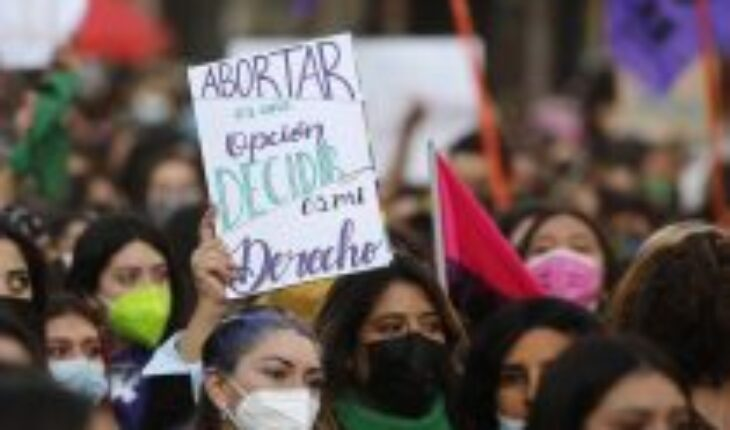 """College of midwives is optimistic about the project that decriminalizes abortion: """"We look very favorably on this legislative process"""""""