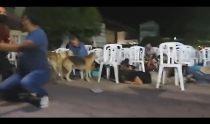 Balacera interrumpe festival en Iguala, Guerrero; reportan dos heridos