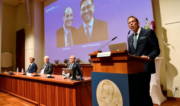 Nobel Prize in Medicine for Julius and Patapoutian for their findings on touch